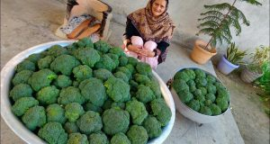 BROCCOLI RECIPE BY MY GRANNY | INDIAN STYLE | VILLAGE FOOD | VILLAGE COOKING | SABJI RECIPE