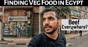 Veg Food in EGYPT & Prices | Sim Card | Hindi